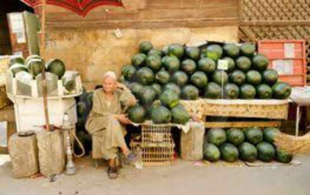 Dilarang menjual Semangka di Brazil